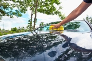 15600865-hand-car-cleaning